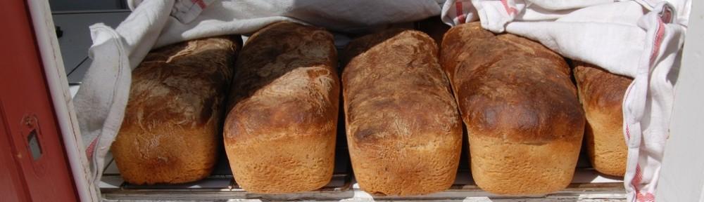 På Skeppsholmens folkhögskola bakar vi vårt eget bröd